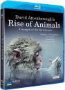 David Attenboroughs Rise of Animals