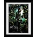 Harry Potter and the Prisoner of Azkaban Sirius - Collector Print - 30 x 40cm