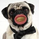 Pimp Dog Chew