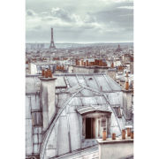 Paris Rooftops Wall Mural