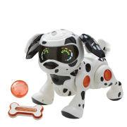 Teksta Puppy - Dalmatian