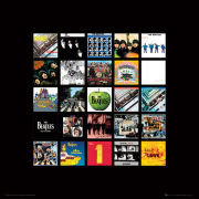 The Beatles Albums - 40 x 40cm Print