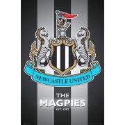 Newcastle United Club Crest 2013 - Maxi Poster - 61 x 91.5cm