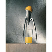 Alessi Juicy Salif Lemon Squeezer