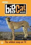 Big Cat Week - Series 1 And 2