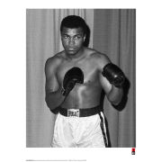 Muhammad Ali Fine Art Print - Stance