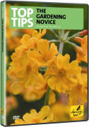 Top Tips For The Gardening Novice
