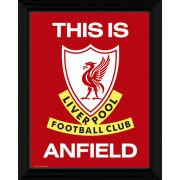 Liverpool This Is Anfield - 16
