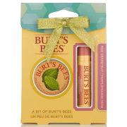 Burt's Bees a Bit of Burt's - Pink Grapefruit Christmas 2014