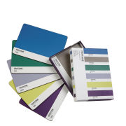 Pantone Mixed Set Placemats - Interior Tones