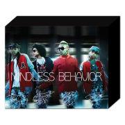 Mindless Behaviour Band - 50 x 40cm Canvas