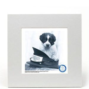 Battersea Dogs Home Fine Art Print - Hats off to Battersea