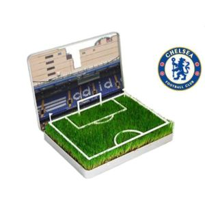 Grow Your Own Chelsea Mini Pitch