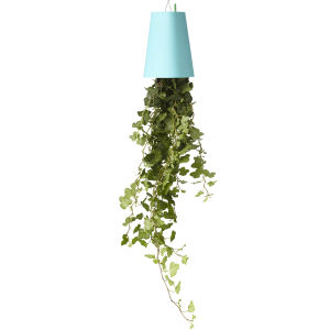 Sky Planter Upside Down Indoor Plant Pot - Pastel Blue