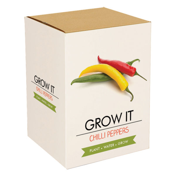 how to grow large chilli plants