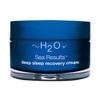 H2O Plus Sea Results Deep Sleep Recovery Cream: Image 1