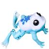 Little Live Pets Tweet Lil' Pet Frog: Image 4