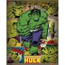 Marvel Comics Incredible Hulk Retro - 16 x 20 Inches Mini Poster
