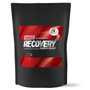 Mass Recovery