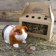 Guinea Piggy Bank