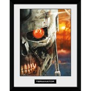 Terminator 2 Comic 2 - 16 Inch x 12 Inch Framed Photographic