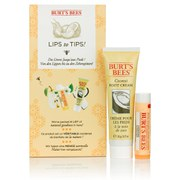 Burt's Bees Lips to Tips