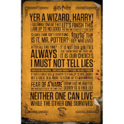 Harry Potter Quotes Maxi Poster - 61 x 91.5cm