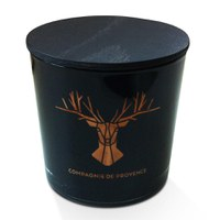 Compagnie de Provence 2014 Winter Limited Edition Scented Candle - Winter Spices (500g)
