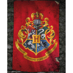 Harry Potter Hogwarts Flag Mini Poster - 40 x 50cm