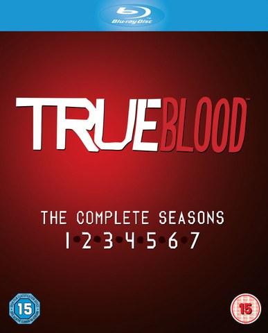 True Blood - Staffel 1 - 7