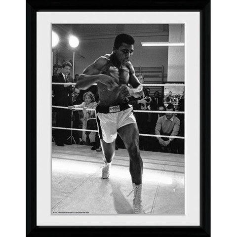 Muhammad Ali Shadow Box - 30x40 Collector Prints