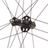 Campagnolo Bora Ultra 35 Tubular Dark Label Wheelset: Image 5