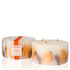 Stoneglow Botanical Collection 3 Wick Candle - Cinnamon and Orange: Image 1