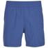 Carhartt Men's Drift Swim Shorts - Dolphin: Image 1