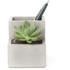 Concrete Desktop Planter and Pen Holder - Small: Image 4