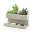 Concrete Desktop Planter and Pen Holder - Large: Image 2