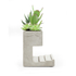 Concrete Desktop Planter and Pen Holder - Large: Image 3
