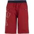 Smith & Jones Men's Amplitude Swim Shorts & Flip Flops - Rift Red: Image 2