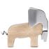 Elephant Corkscrew: Image 1