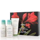 Aveda Calm for the Road Gift Set 140ml