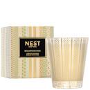 NEST Fragrances Birchwood Pine Classic Candle 8.1 oz