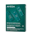 Aveda Exclusive Botanical Repair Strengthening Trio (Worth £27.00)