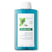 KLORANE Detox Shampoo with Aquatic Mint - Anti-Pollution (13.5 fl. oz.)