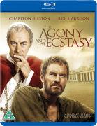 Agony and Ecstasy