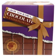 Plant Je Eigen Chocoladebloemen