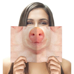 Animal Face Notebook - Pig