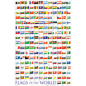 Flags Of the World 2011 - Maxi Poster - 61 x 91.5cm