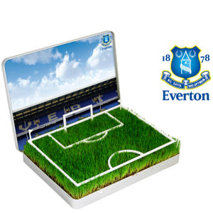 Grow Your Own Everton Mini Pitch