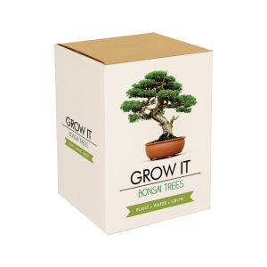 Grow it: Bonsai Bäume