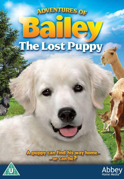 Adventures of Bailey: The Losy Puppy